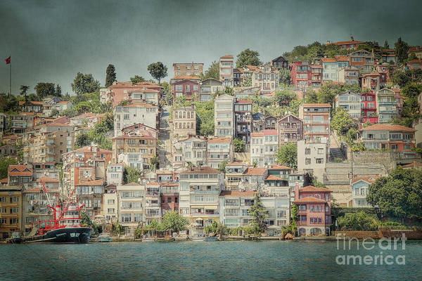 Galata Photograph - Little Houses by Emily Kay