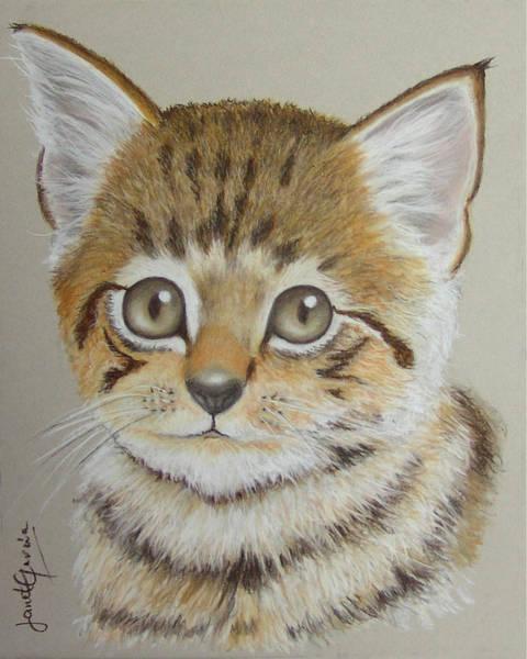 Pastel - Little Kitty by Janet Garcia