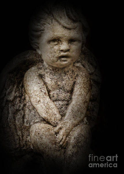 Wall Art - Photograph - Little Lost Angel by Lee Dos Santos