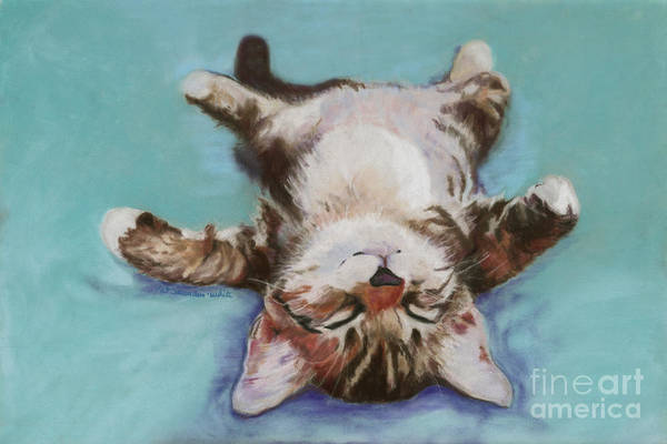 Domestic Cat Wall Art - Pastel - Little Napper  by Pat Saunders-White