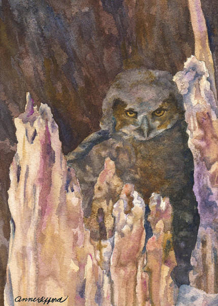 Birds Of Prey Wall Art - Painting - Little Owl by Anne Gifford