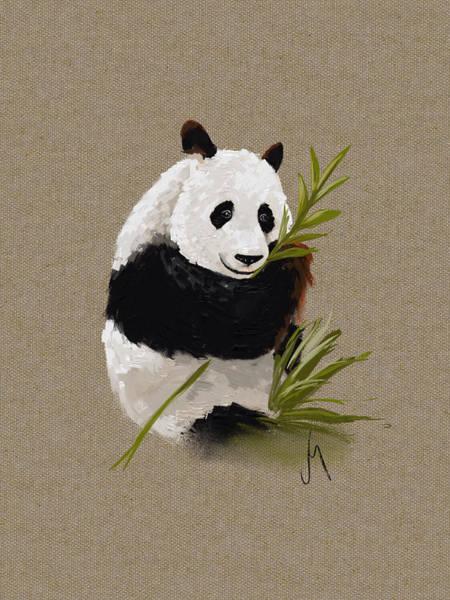 Panda Drawing Painting - Little Panda by Veronica Minozzi