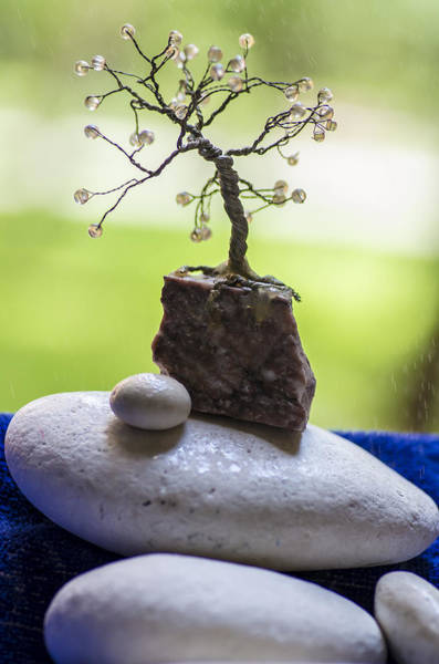 Photograph - Little Pearl Tree by Sotiris Filippou