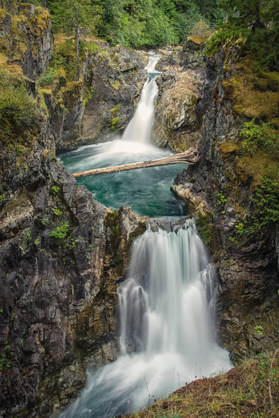 Photograph - Little Qualicum Falls by Carrie Cole