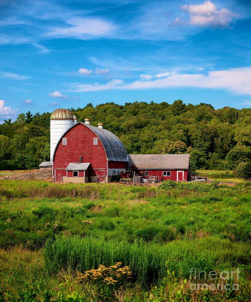 Little Red Barn Art Print