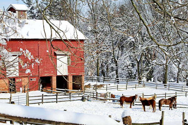 Fence Post Digital Art - Little Red Farm In Snow by Geraldine Scull