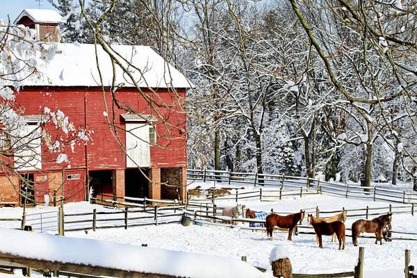 Snow Fence Digital Art - Little Red Farm In Snow by Geraldine Scull