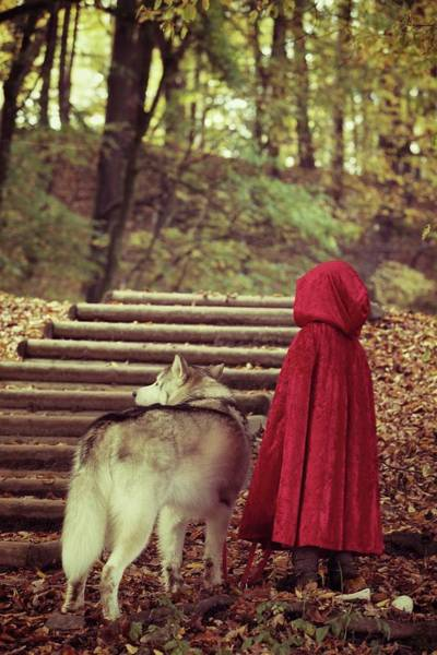 Little People Photograph - Little Red Riding Hood And The Wolf by Susan.k.