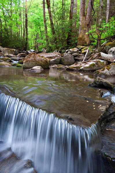 Photograph - Little River by Walt Sterneman