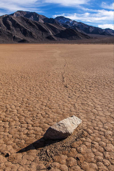 Racetrack Playa Photograph - Little Runaway  by James Marvin Phelps