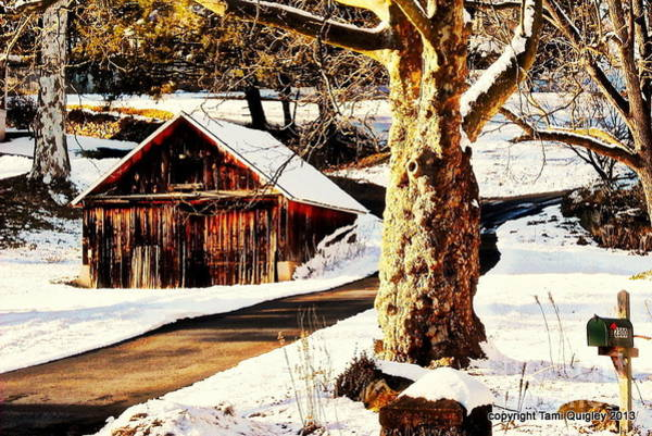 Monocacy Wall Art - Photograph - Little Shed In The Snow by Tami Quigley