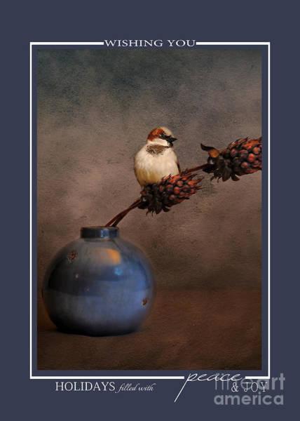 Photograph - Little Sparrow Song Bird Wildlife Christmas Cards by Jai Johnson