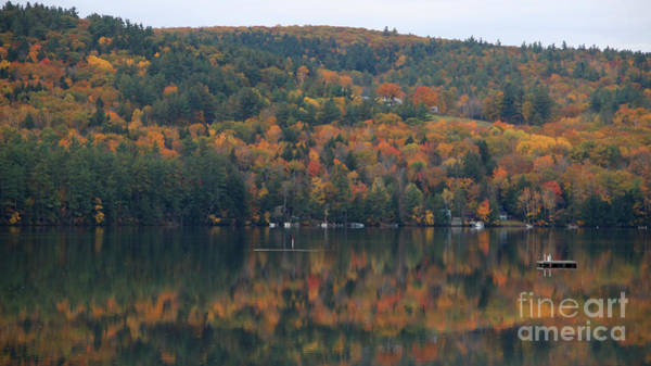 Photograph - Little Squam Lake by Michael Mooney