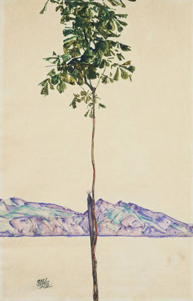 Angle Drawing - Little Tree by Egon Schiele