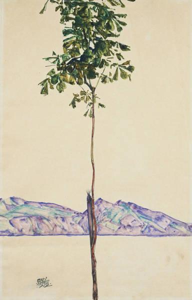 Painting - Little Tree by Egon Schiele