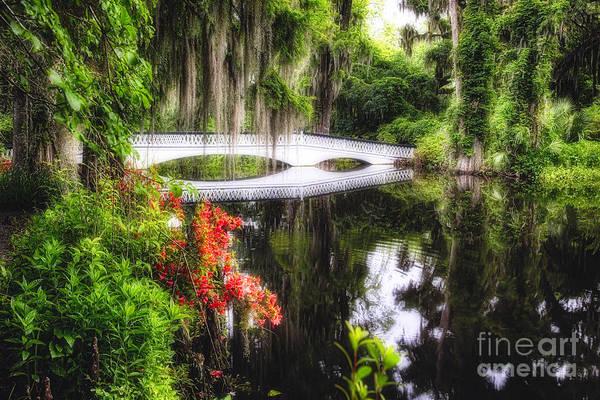 Wall Art - Photograph - Little White Plantation Bridge by George Oze
