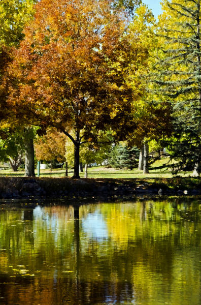 Photograph - Littleton Pond 4 by Angelina Tamez