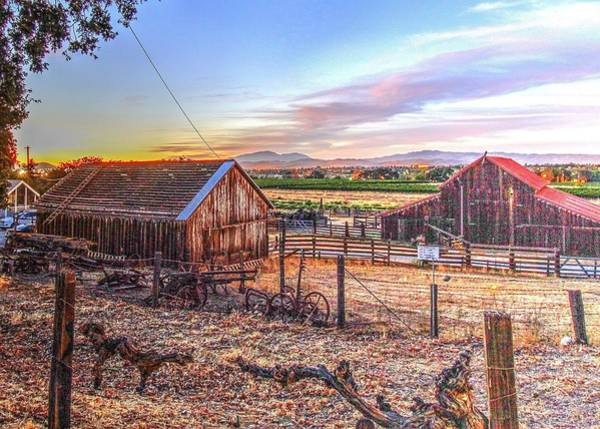 Photograph - Livermore Barns by John King