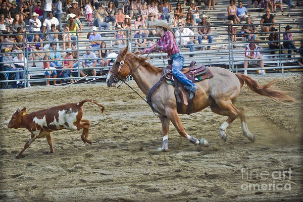 Prca Wall Art - Photograph - Livestock Cowgirl by Gary Keesler