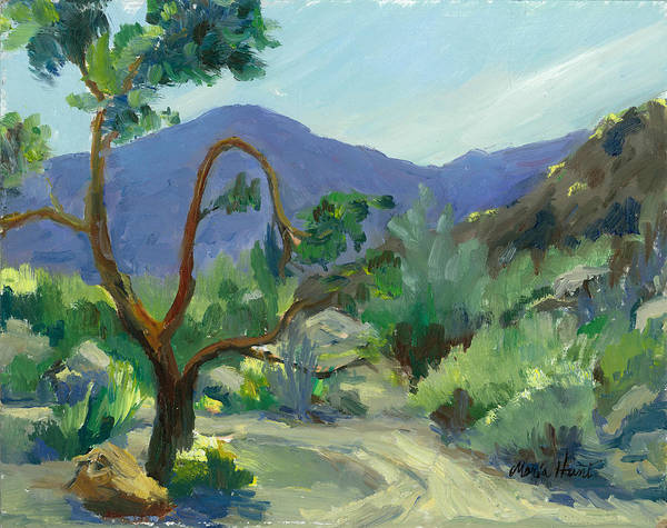 Blooming Tree Painting - Stately Desert Tree - Spring Commeth by Maria Hunt