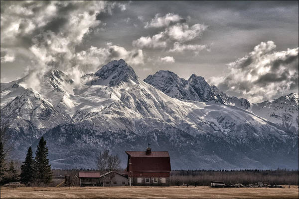 Anchorage Photograph - Living Large by Robert Fawcett