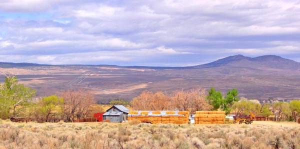 Bishop Hill Photograph - Living Rural by Marilyn Diaz