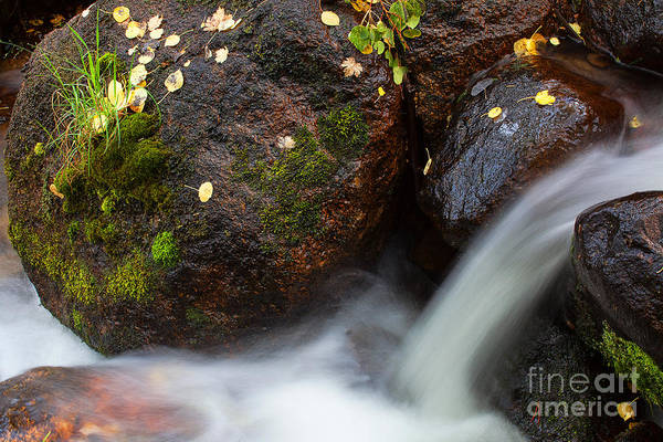 Photograph - Living Waters by Jim Garrison