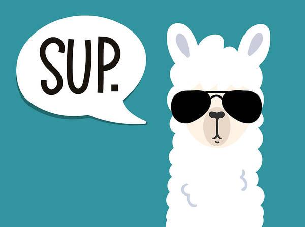 Doodle Digital Art - Llama Poster With Inscription Sup by Larysa Amosova
