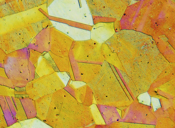 Wall Art - Photograph - Lm Of Thin Section Of Brass by Astrid & Hanns-frieder Michler/science Photo Library