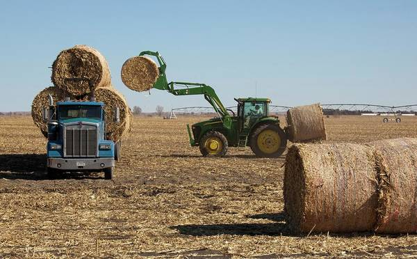Hay Bale Wall Art - Photograph - Loading Bales Of Hay by Jim West