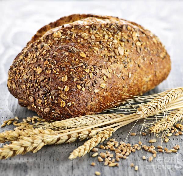 Buns Photograph - Loaf Of Multigrain Bread by Elena Elisseeva