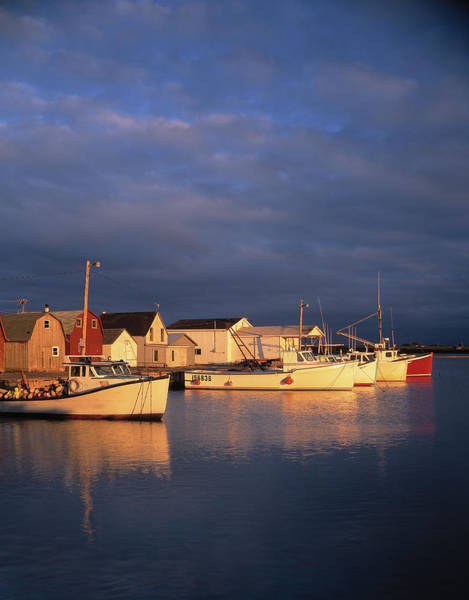 Maritime Provinces Photograph - Lobster Boats Tied Up On Prince Edward by Panoramic Images