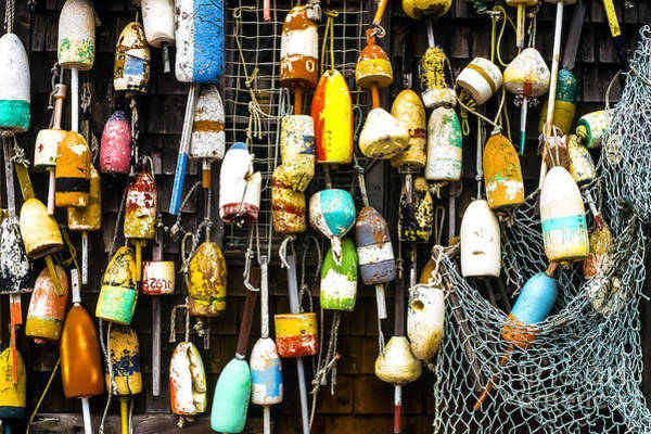 Wall Art - Photograph - Lobster Buoys And Fishing Net by Thomas R Fletcher