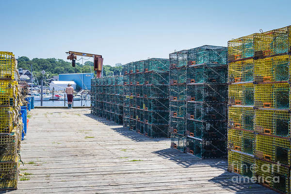 Photograph - Lobster Traps by George DeLisle