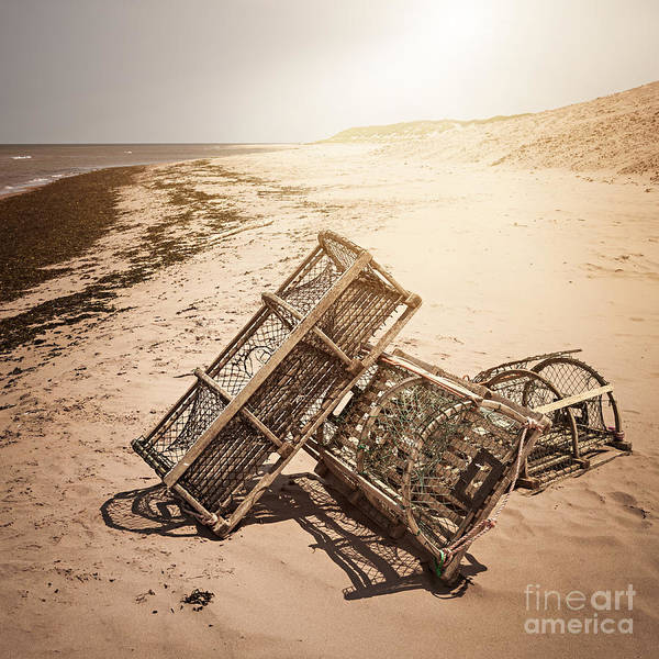 Traps Photograph - Lobster Traps On Beach by Elena Elisseeva