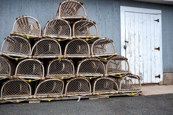 Photograph - Lobster Traps by Trever Miller