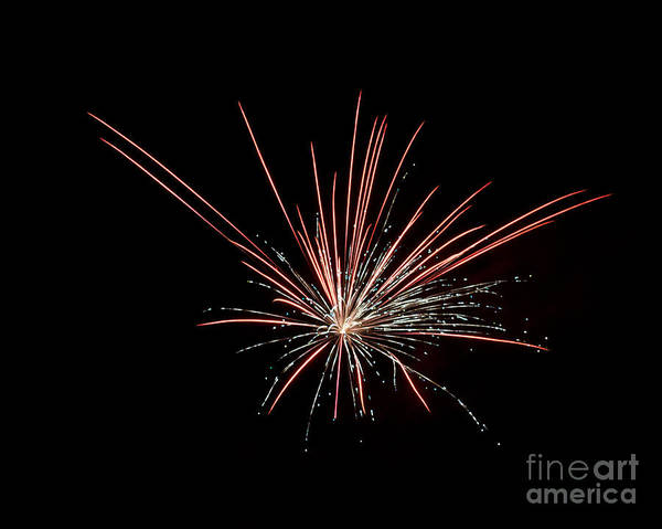 Photograph - Local Fireworks by Mark Dodd
