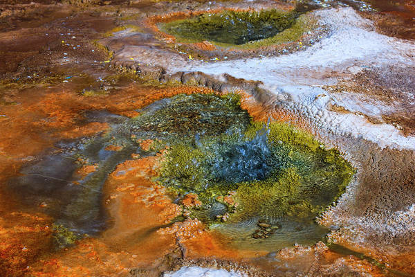 Wall Art - Photograph - Located In The Vast Pools Of Geothermal by Mallorie Ostrowitz