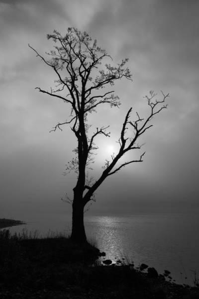 Photograph - Loch Ard Mist by Grant Glendinning
