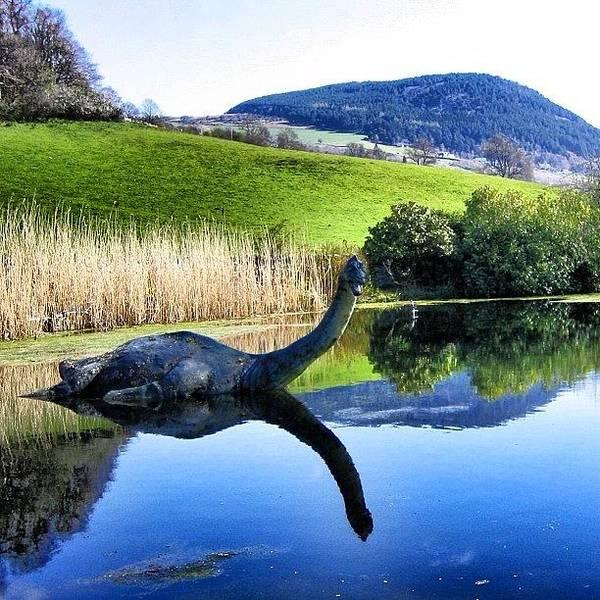Wall Art - Photograph - Loch Ness - Scotland by Luisa Azzolini