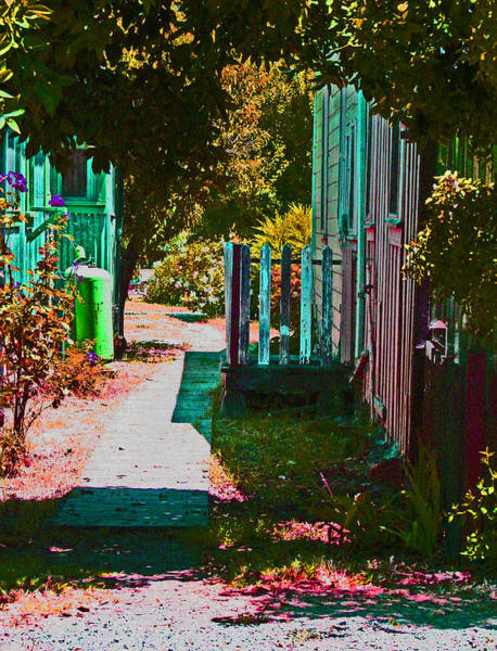 Photograph - A Locke Ca Alley Way by Joseph Coulombe