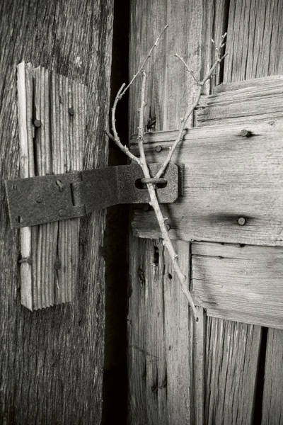 Photograph - Locked-up Tight by Denise Bush