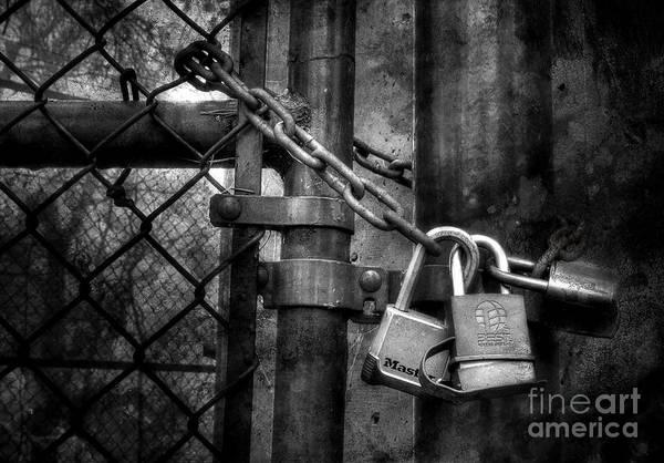 Chain Link Photograph - Locks Locking Locks by Michael Eingle
