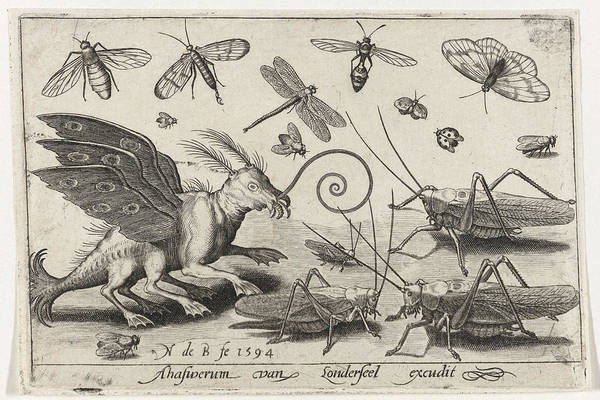 Grass Drawing - Locusts And Fantasy Creature With Wings And Webbed by Nicolaes De Bruyn
