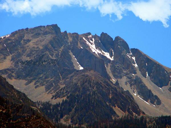 Photograph - Lofty Sierra Nevada Mountain by Frank Wilson