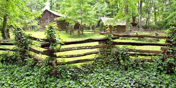 Photograph - Log Cabins And Splitrail Fence by Gordon Elwell