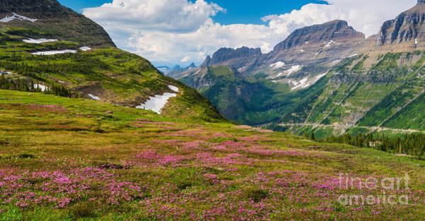 Photograph - Logan Pass Panorama by Inge Johnsson