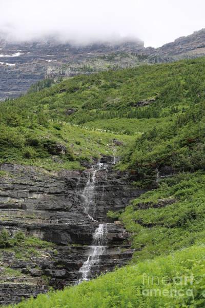 Photograph - Logan Pass Waterfall by Carol Groenen