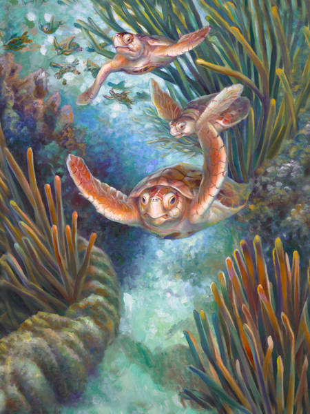 Wall Art - Painting - Loggerhead Sea Journey IIi by Nancy Tilles