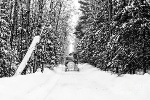 Photograph - Logger's Commute by Lori Dobbs